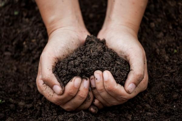 Fair-Natur-natuerliche-Bodenverbesserung
